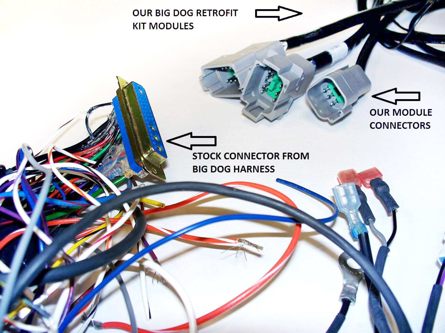 69_1 wire plus wire plus now offers harness modification for big dog Custom Chopper Wiring Harness at n-0.co